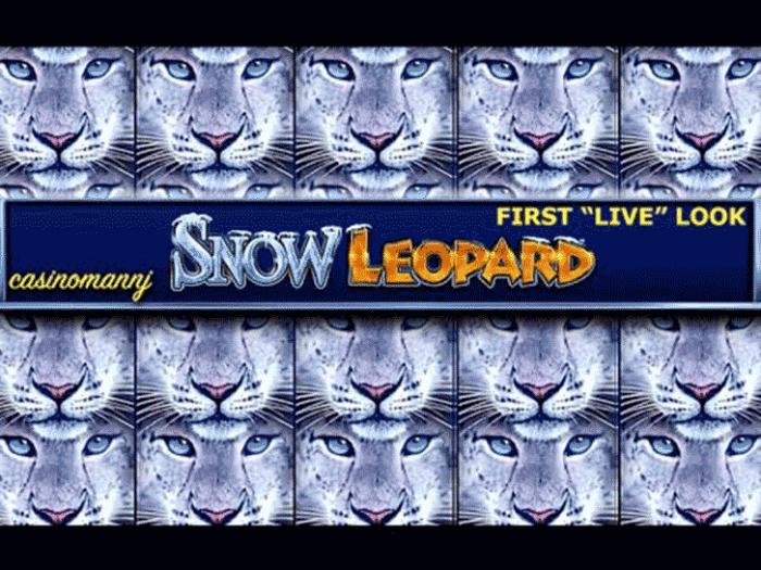 Snow Leopard iframe